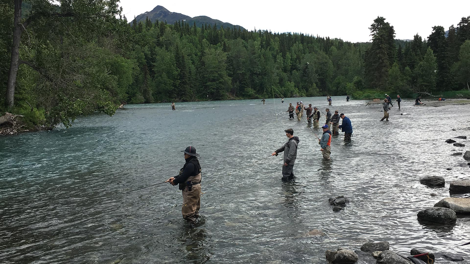 Kenai river fishing salmon and trout the river crew for Kenai river fishing